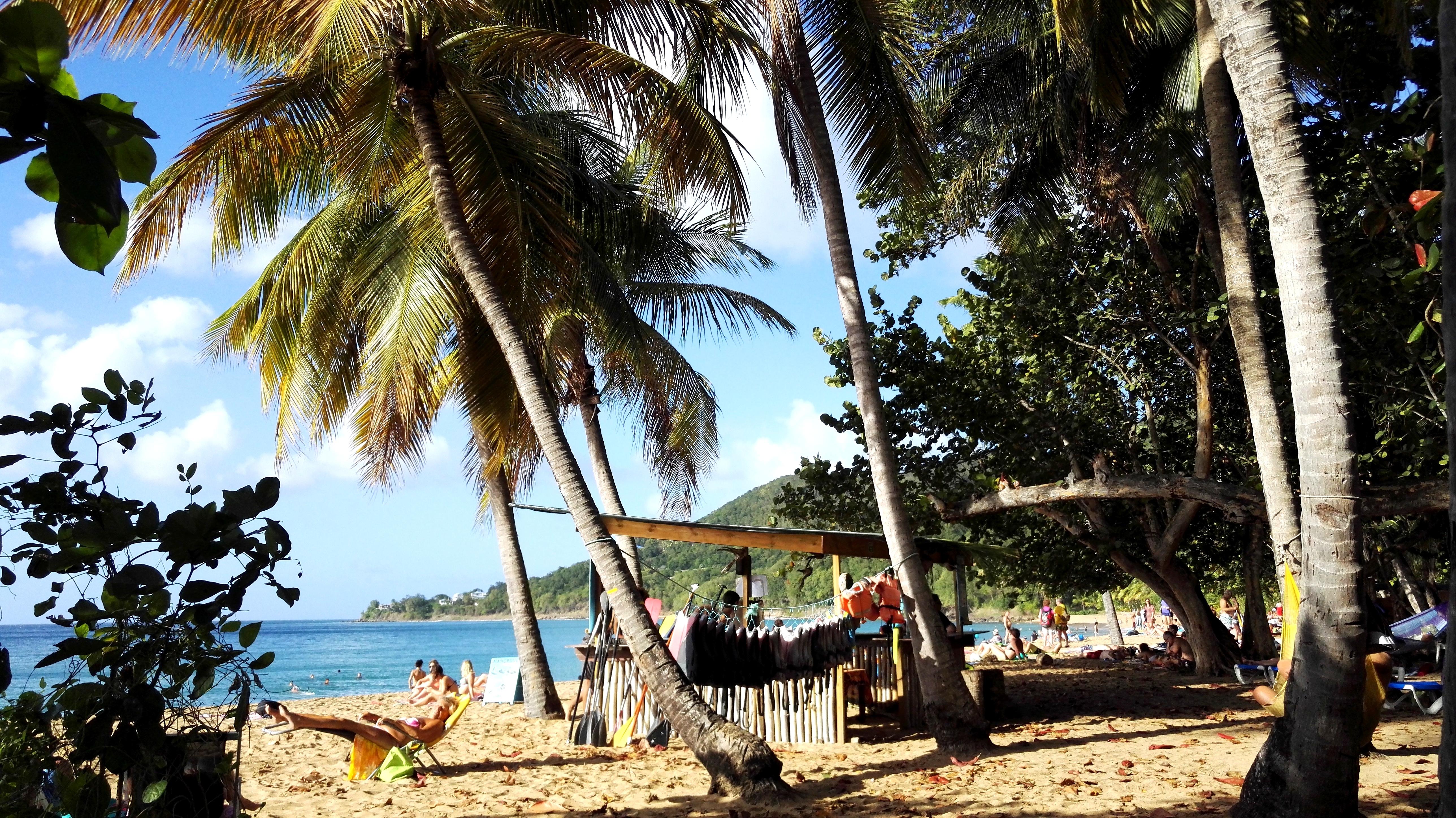 Bouillante réserve Cousteau - Guadeloupe