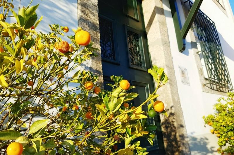 Casa Do Golgotha - Porto