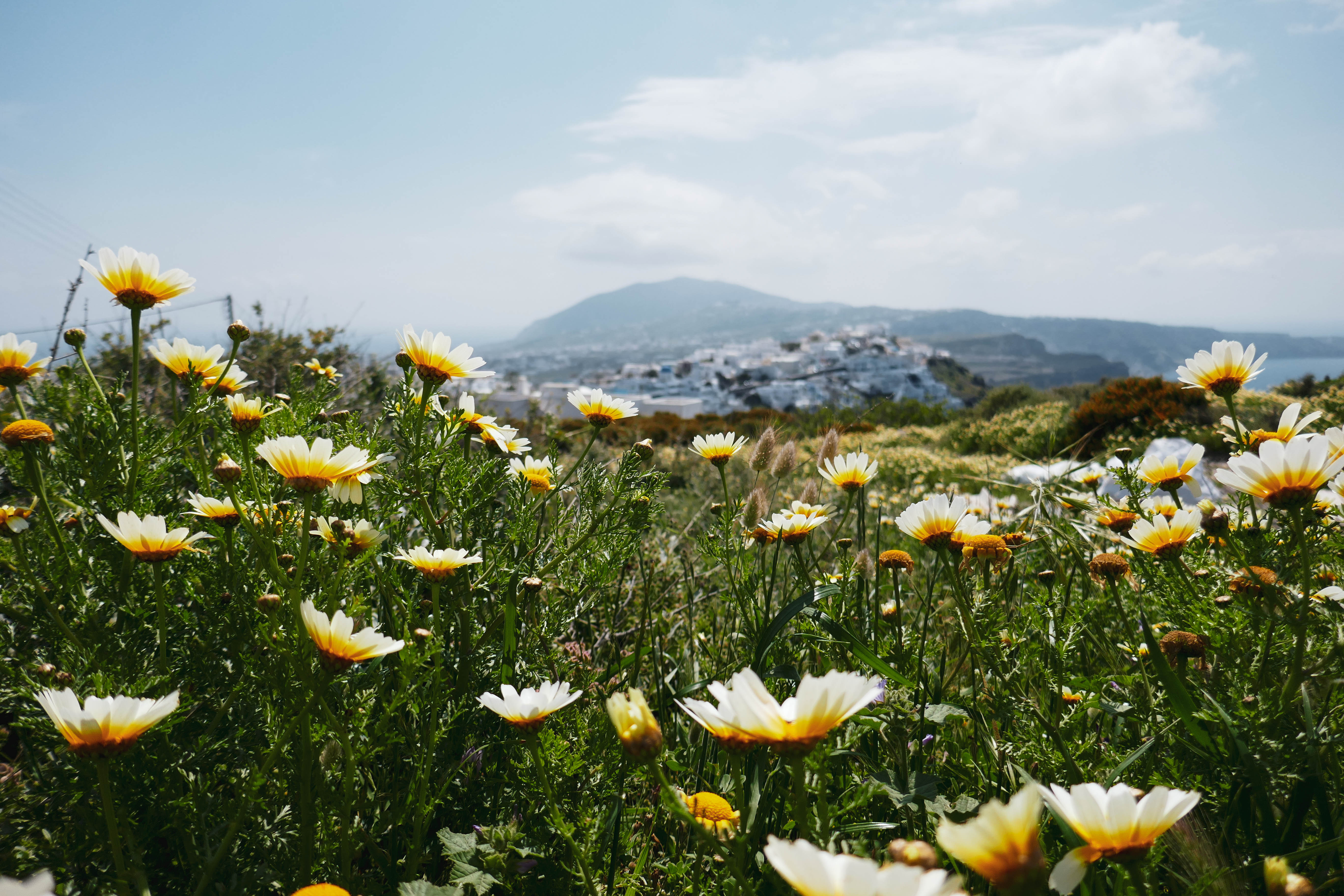 Fira, archipel des Cyclades, île de Santorin.