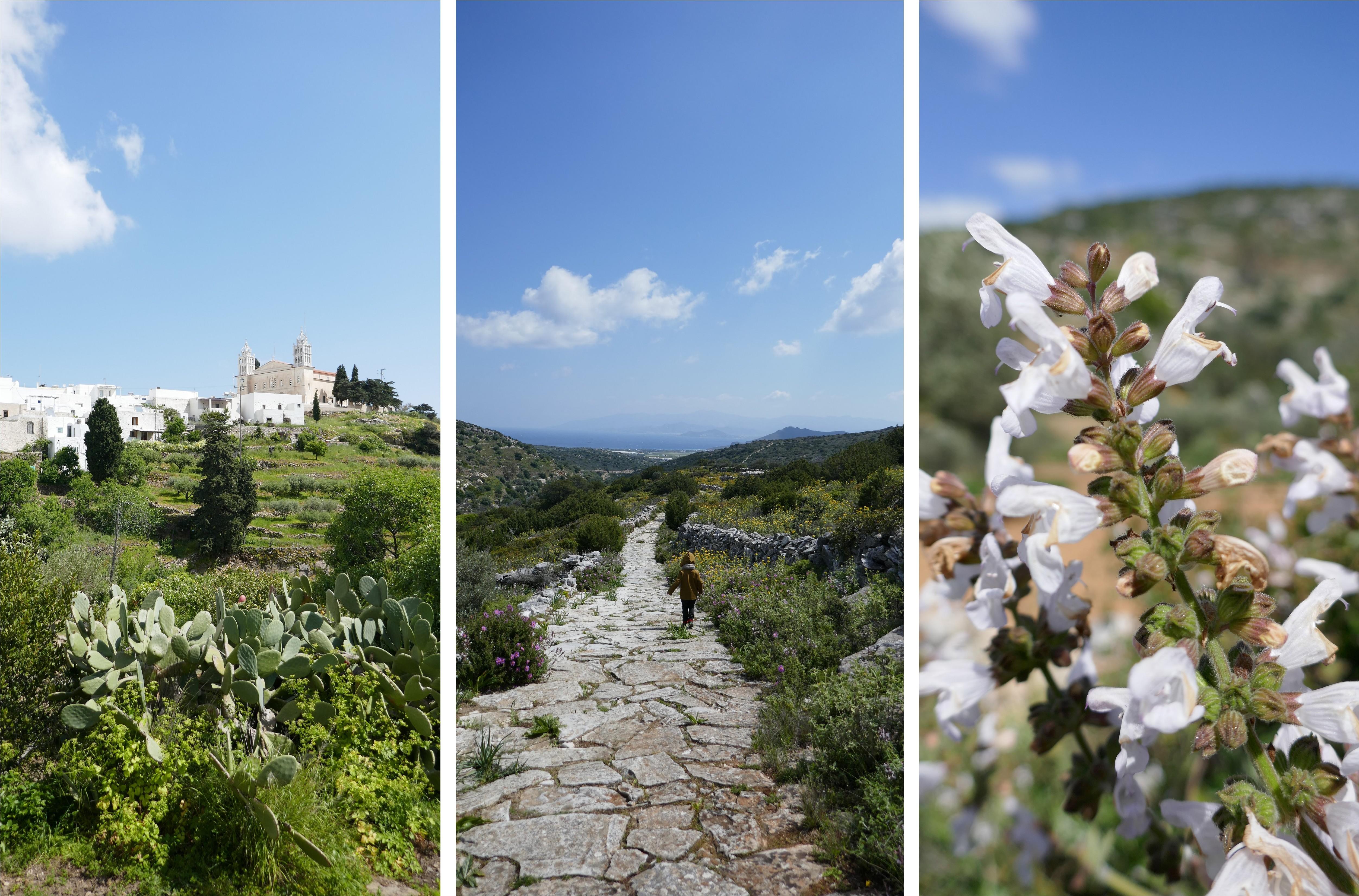 De Lefkes à Prodomos, l'ancienne route Byzantine - Grèce - blog De beaux Lents Demains