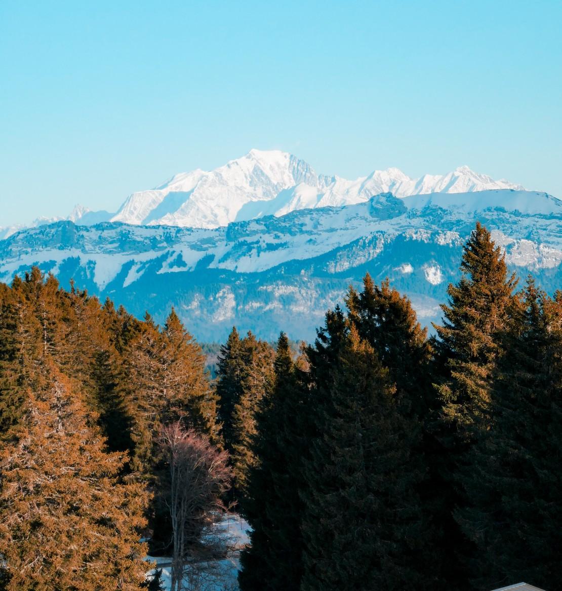 Vue sur le Mont Blanc depuis le Plateau du Revard