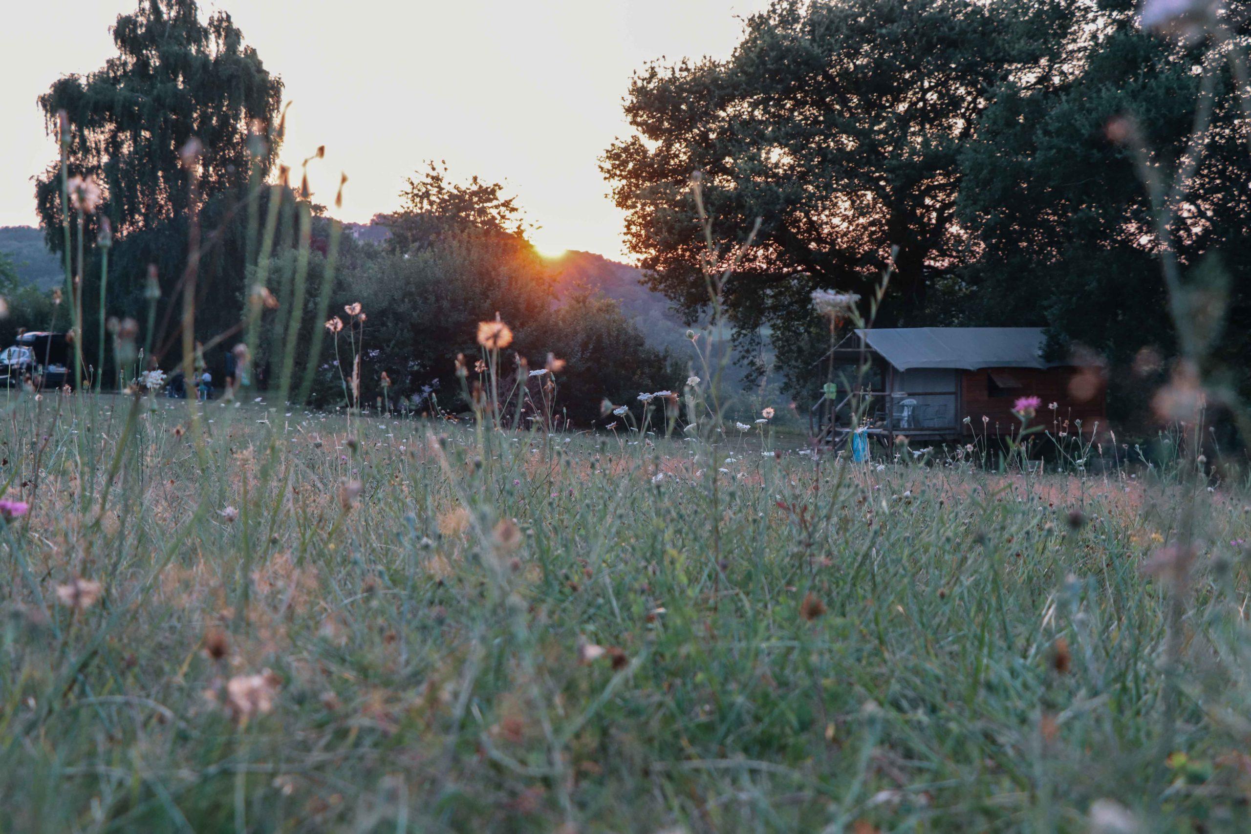 Camping Domaine de la Besse - Camon
