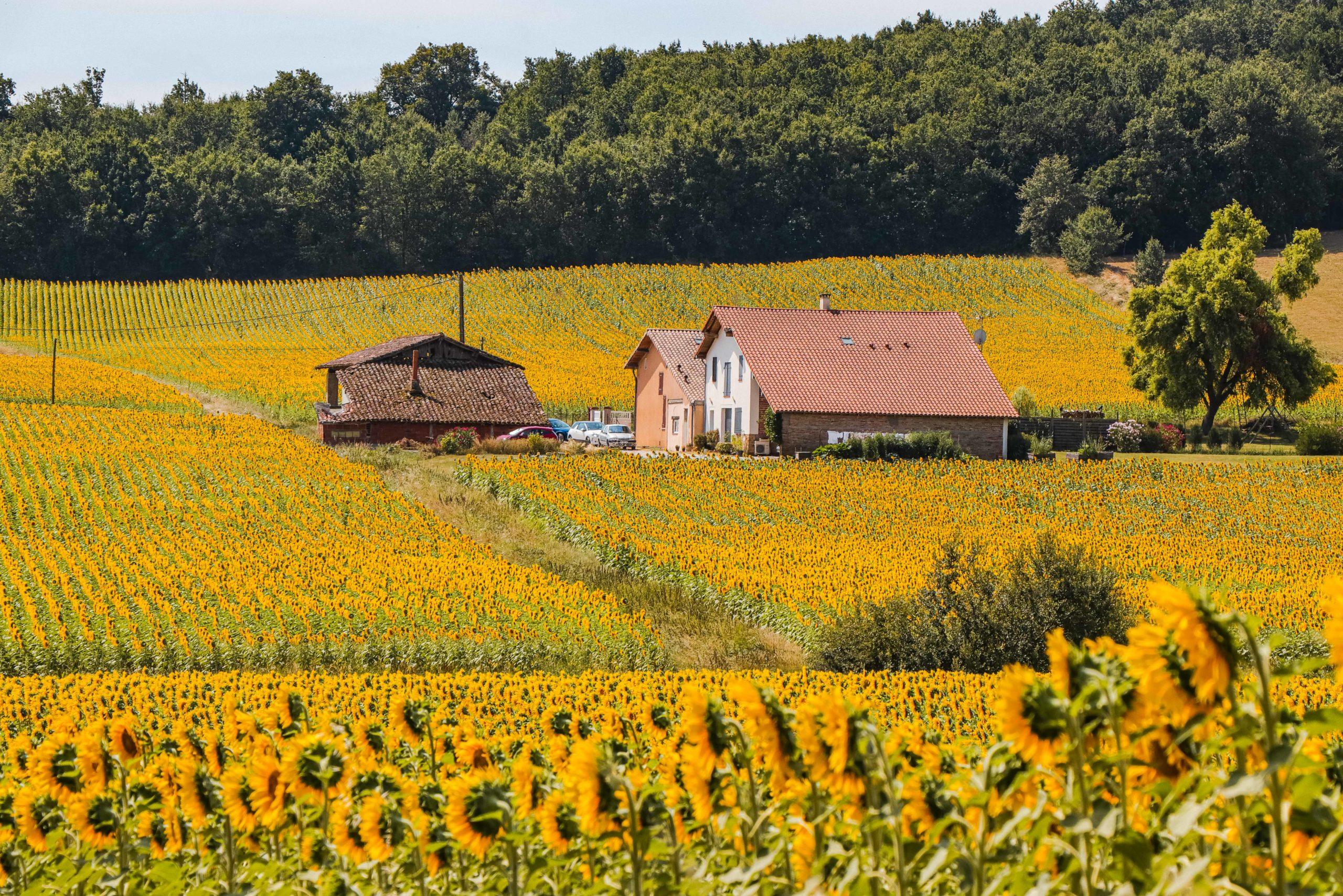 Le burgaud - Haute Garonne - Que faire en famille dans le Pays Tolosan