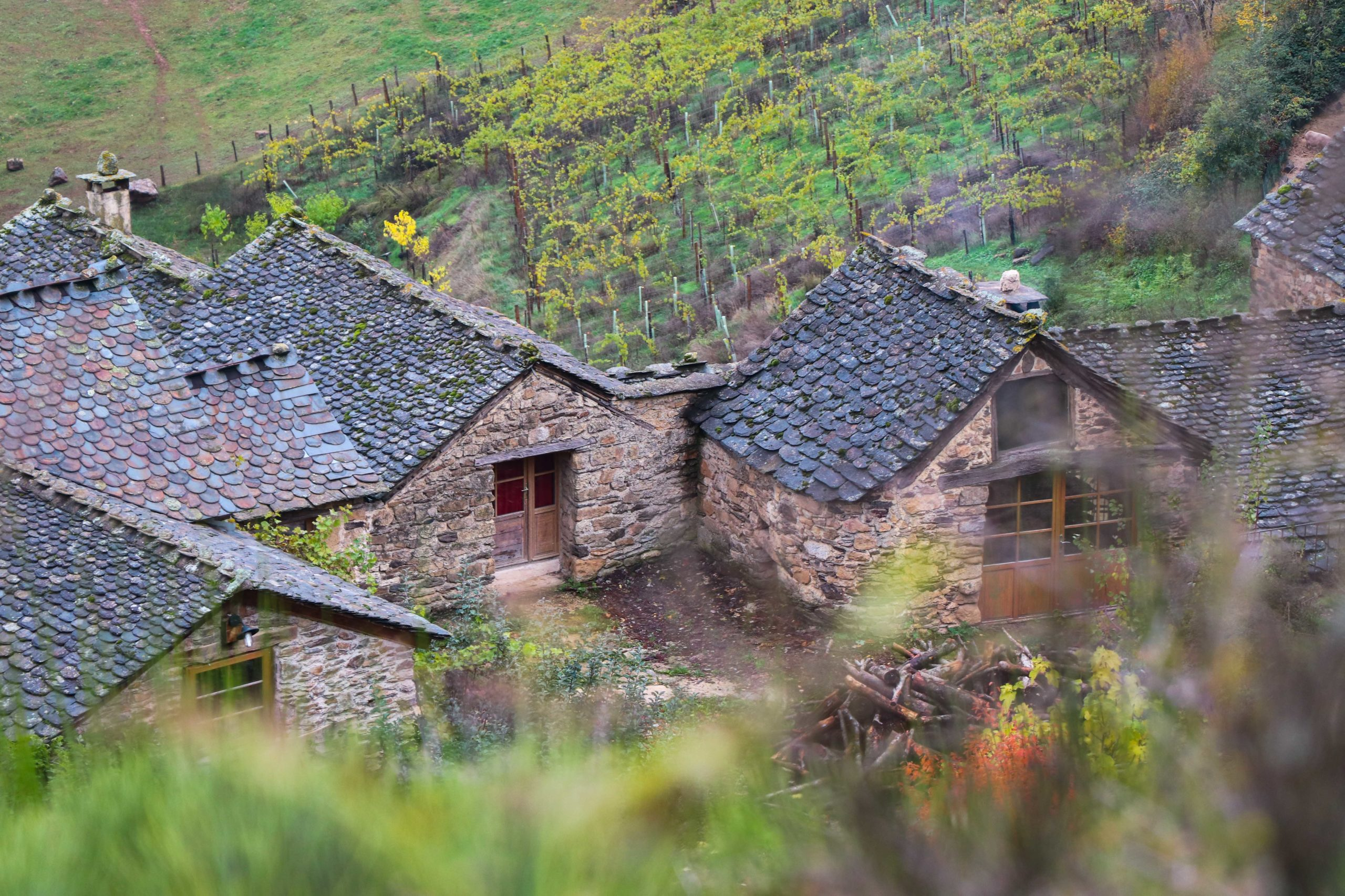 La ferme des Cévennes - la Lozère en famille - Chataîgnes des Cévennes