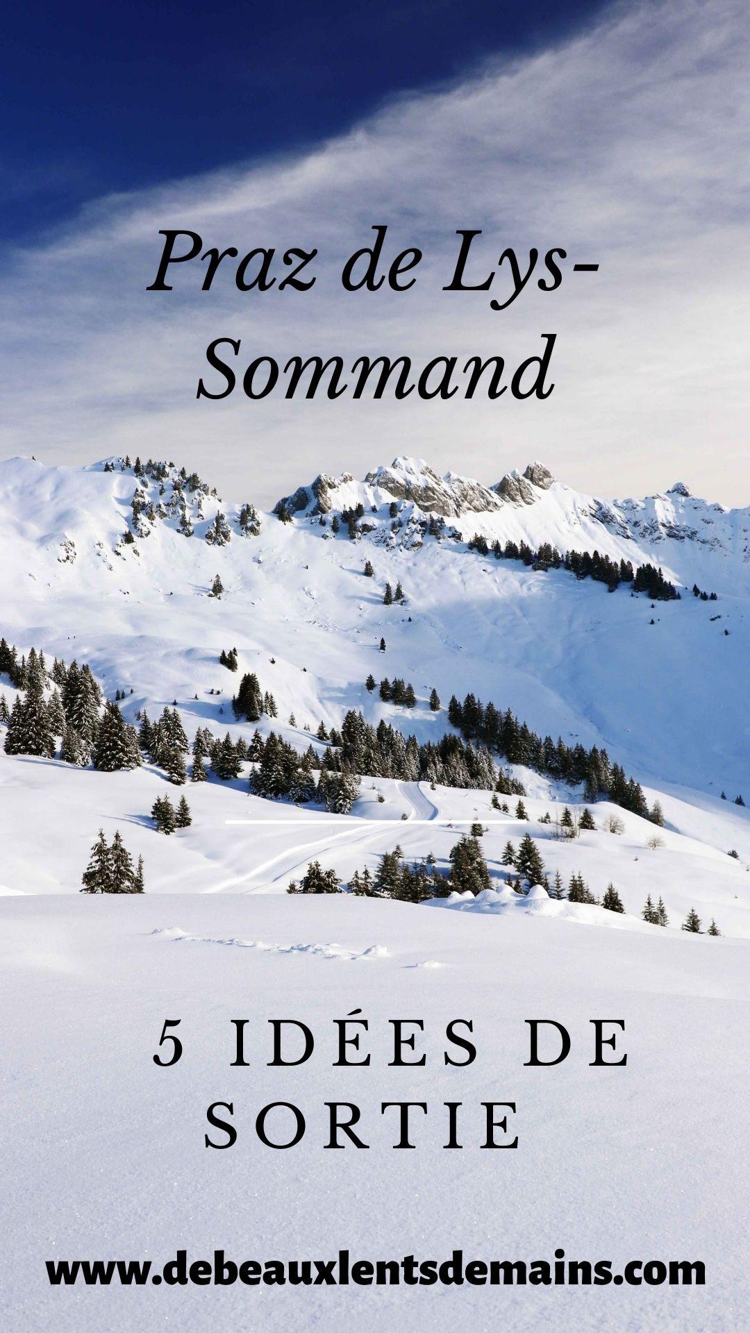 5 idées de sortie à Praz de Lys Sommand en famille