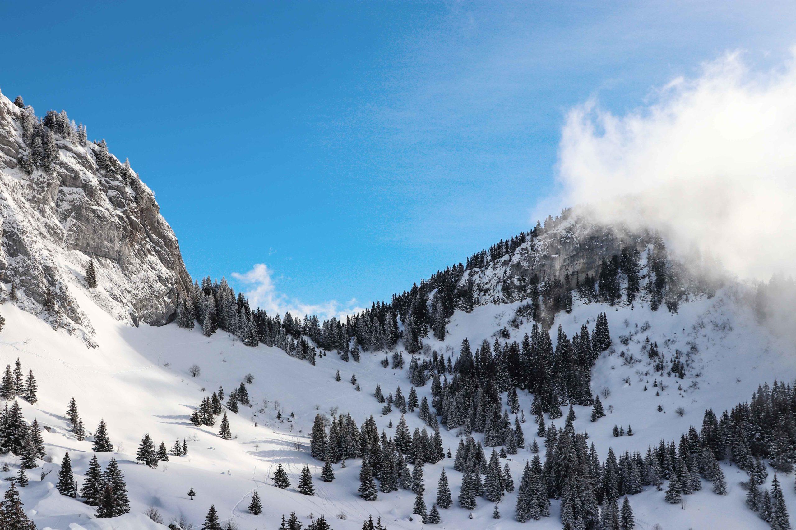 Alpage de la charmette - Haute-Savoie - Praz de Lys - Sommand