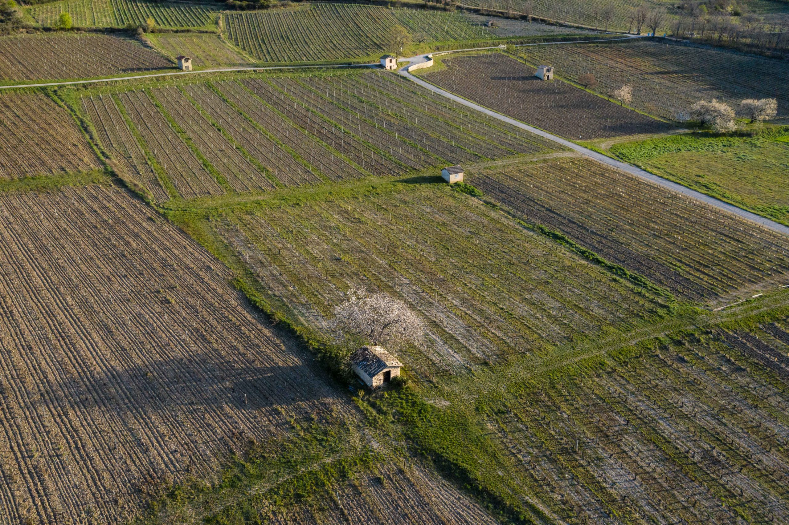 Chemin des Vignes à Châtillon-en-Diois