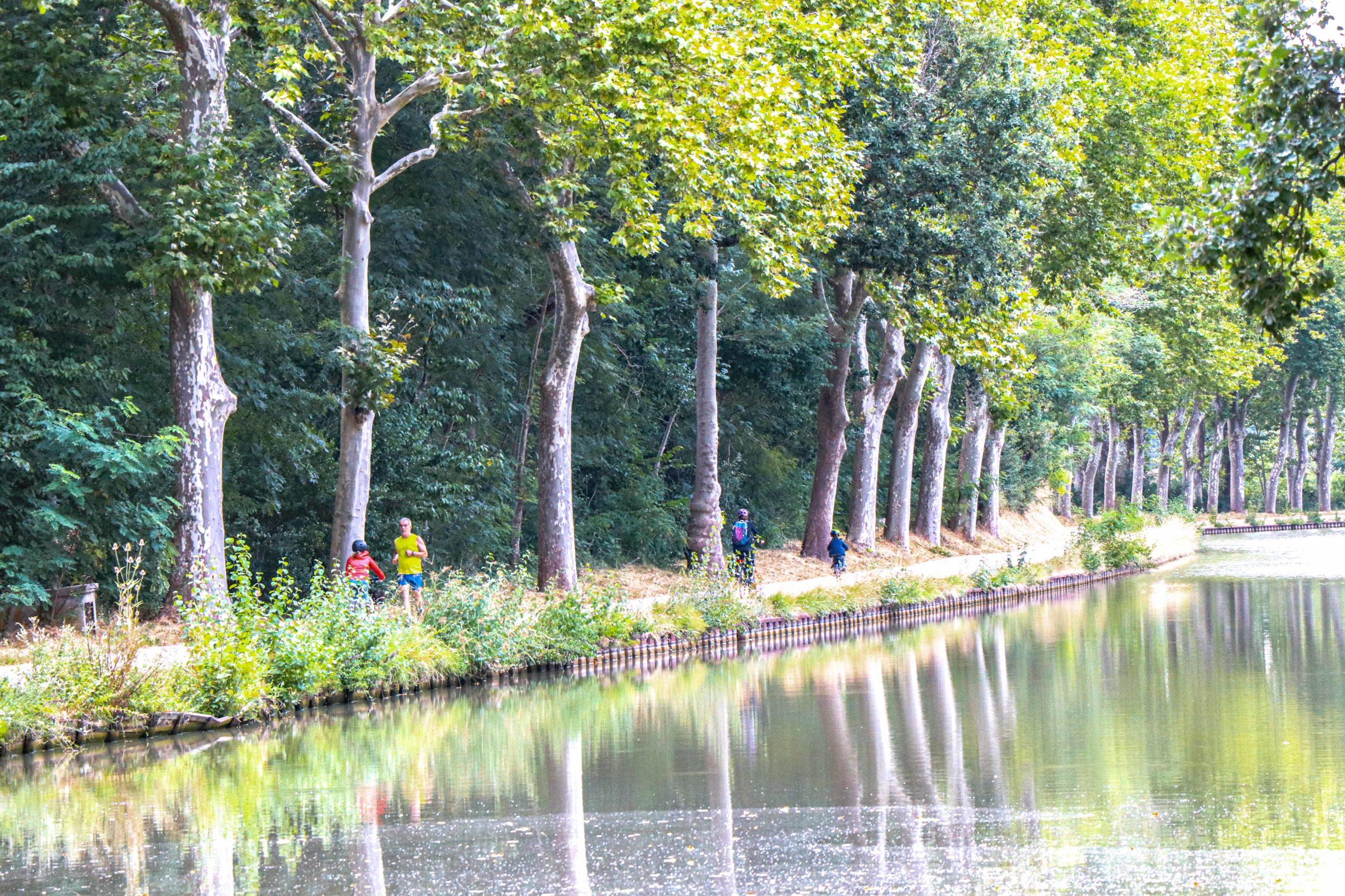 canal du mdi Gardouch